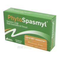 Phytospasmyl Caps B/60 à Saint -Vit