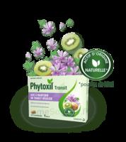 Phytoxil Transit Comprimés B/20 à Saint -Vit