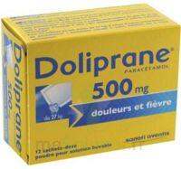 DOLIPRANE 500 mg Poudre pour solution buvable en sachet-dose B/12 à Saint -Vit