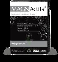 Synactifs Magnactifs Gélules B/60 à Saint -Vit