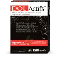 Synactifs Dolactifs Gélules duocaps B/15 à Saint -Vit