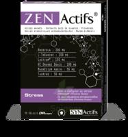 Synactifs Zenactifs Gélules B/30 à Saint -Vit