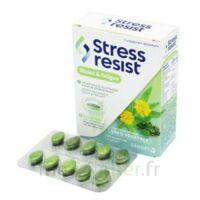 Stress Resist Comprimés Stress & fatigue B/30 à Saint -Vit