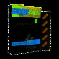 Synactifs Respigreen Bio Gélules B/10 à Saint -Vit
