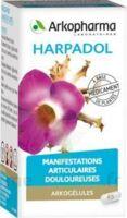 ARKOGELULES HARPAGOPHYTON, 150 gélules à Saint -Vit