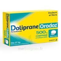 DOLIPRANEORODOZ 500 mg, comprimé orodispersible à Saint -Vit