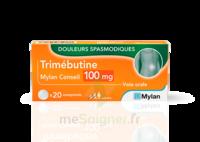 Trimebutine Mylan Conseil 100 Mg, Comprimé à Saint -Vit