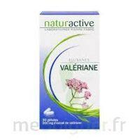 ELUSANES VALERIANE 200 mg, gélule Pilul/30 à Saint -Vit