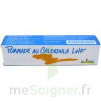CALENDULA LHF POM T/20G à Saint -Vit