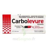 CARBOLEVURE Gélules adulte Plq/30 à Saint -Vit