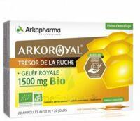 Arkoroyal Gelée royale bio 1500 mg Solution buvable 20 Ampoules/10ml à Saint -Vit