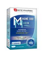 Magné 300 Marin (2 mois) à Saint -Vit