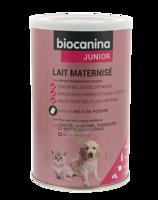 Biocanina Lait poudre maternisé B/400g à Saint -Vit