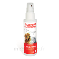 Clément Thékan Caniderma Solution externe cicatrisant Spray/125ml à Saint -Vit