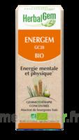 Herbalgem Energem Solution buvable bio Fl cpte-gttes/30ml à Saint -Vit
