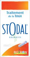 Boiron Stodal Granules Tubes/2 à Saint -Vit