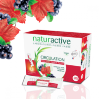 Naturactive Phytothérapie Fluides Solution buvable Circulation 2B/20 Sticks/10ml à Saint -Vit