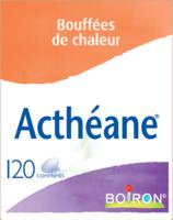 Boiron Acthéane Comprimés B/120 à Saint -Vit